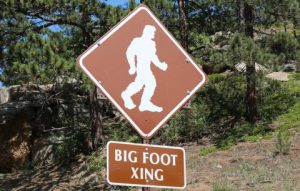 Gone Sasquatchen: Big Foot Lives